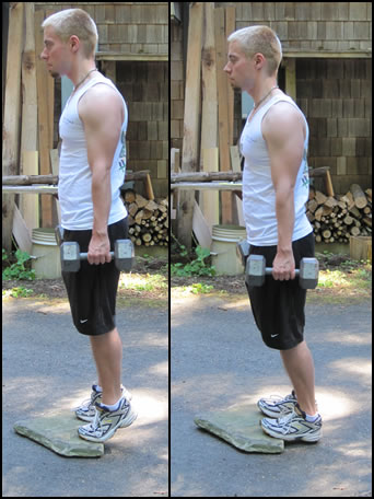 Free weight training exercises- how to do dumbbell calf raises.