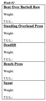 Body By Science Review and Big 5 Workout PDFs