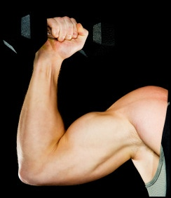 Weight training is a great way to strengthen connective tissue.