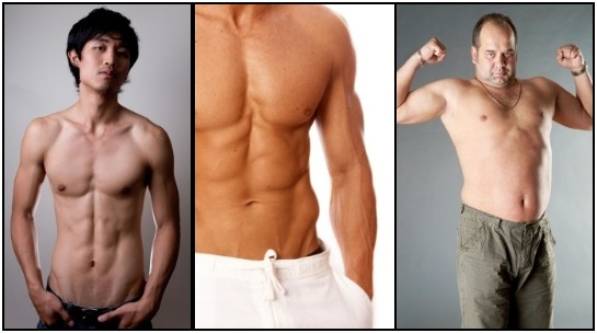 The 3 different kinds of somatotype, from left to right: Ectomorph, Mesomorph, & Endomorph.
