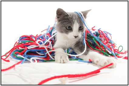 You won't need much workout motivation to play with yarn. Just make sure it doesn't get you!